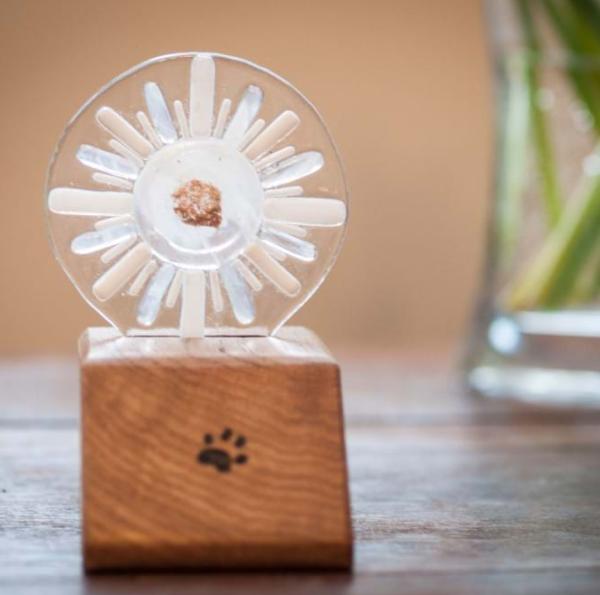 Pet memorial star oak base glass